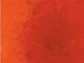 pumpkin-Abstract Dyes over White